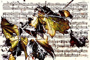 Feuille de musique avec des feuilles d'or sur Christine Nöhmeier