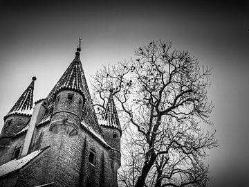Donkere Toren van Alexander Dorn