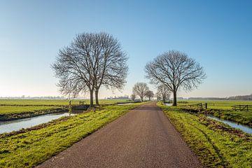 Landweg door het poldergebied van de Alblasserwaard in Zuid-Holland van Ruud Morijn