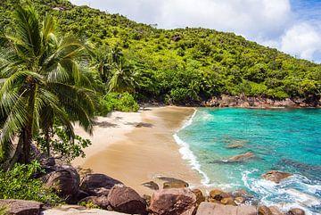 Traumstrand Anse Major -  Mahé - Seychellen von Max Steinwald