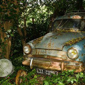 Simca Aronde verscholen in de bosjes van Greet ten Have-Bloem