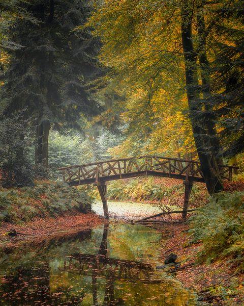 De Sprookjesbrug. van Ton Drijfhamer