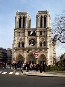 Notre Dame '1of4' van Niels van Houten