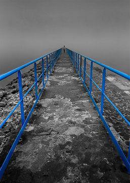 Flèche Bleue von Catherine Fortin