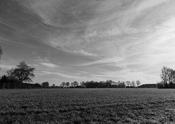 breite Sichtweise von Lieke van Grinsven van Aarle