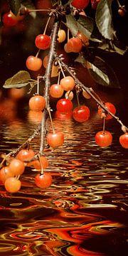 Fruitbrandy met zure kersen van Christine Nöhmeier