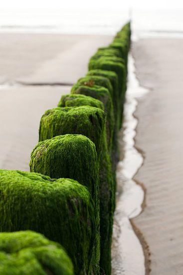 Groene golfbrekers van Richard Geven
