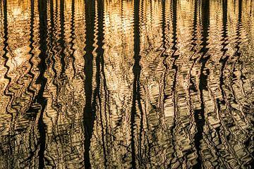 Reflexion bei Sonnenuntergang von Connie Posthuma