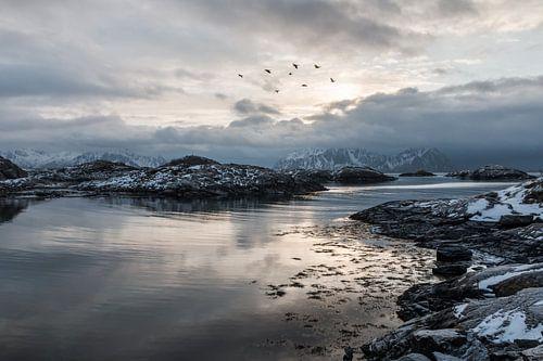 Zeezicht met bergen (Noorwegen) van