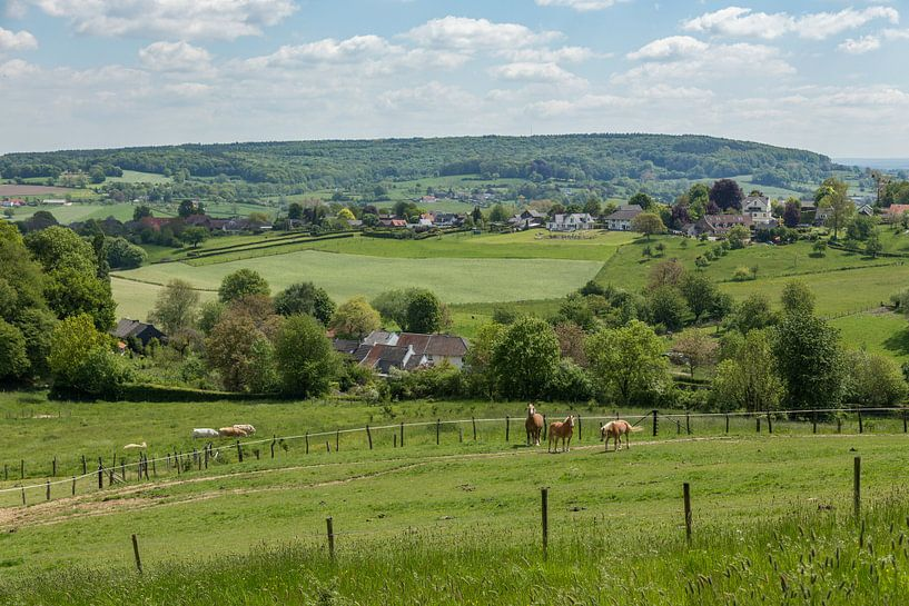 Uitzicht op de Schweiberg in Zuid-Limburg van John Kreukniet
