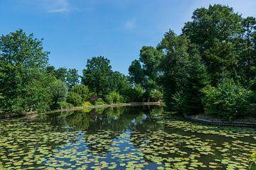 Mooi park van Patrick Verhoef