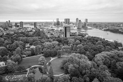 Harmony of the Seas in Rotterdam van MS Fotografie