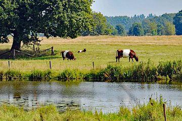Gezin lakenvelders in een zomers landschap van Tjamme Vis