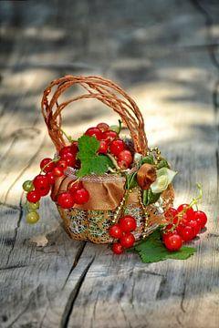 Fruitmand van Claudia Evans