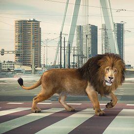 Urban Wild I sur Arjen Roos