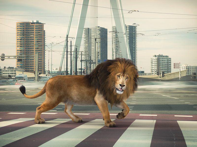 Urban Wild I van Arjen Roos