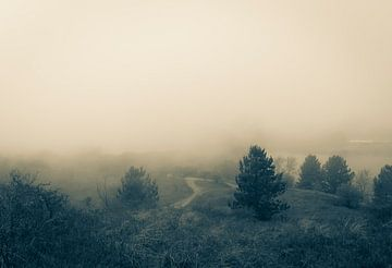 Mist van Elle Rowbottom