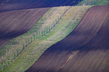 Moravian Highway van Guy Lambrechts