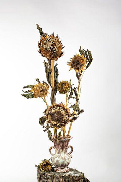 De zonsondergangbloem van Gerry van Roosmalen