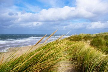 Strand-2 von Jan Meijer