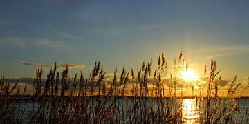 Wintersonne von Ostsee Bilder