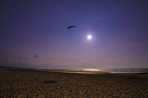 zon, zee en strand Zeeuwse kust van