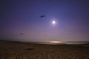 zon, zee en strand Zeeuwse kust van T de Smit