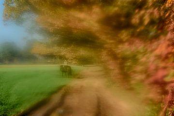 Herfstblad 2 van Gerard de Ridder