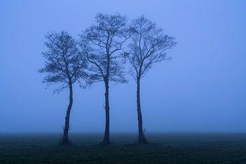 Dichter Nebel im Polder von Rick Kloekke