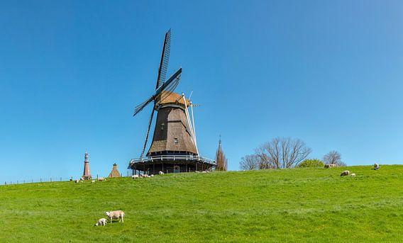 IMGD6_1108274_panorama.eps van Rene van der Meer