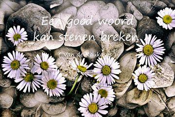 Een good woord kan stenen breken van Christine Nöhmeier