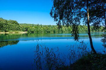 Landschaft am Trünnensee an der Mecklenburger Seenplatte von Rico Ködder