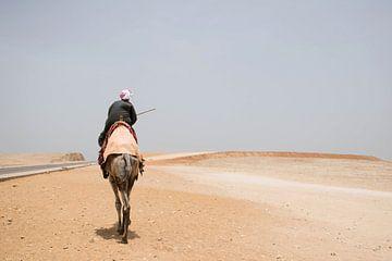 Homme égyptien en costume traditionnel sur un chameau dans le désert près de Gizeh. sur Marjolein Hameleers