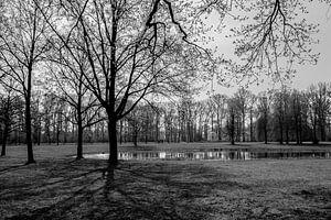 Almelo, Beeklustpark