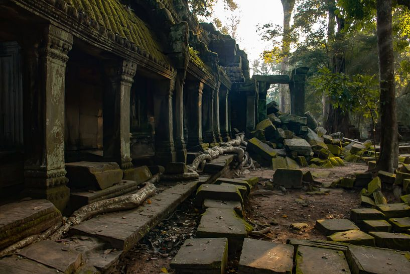 Tombraider Temple van Lizette Schuurman