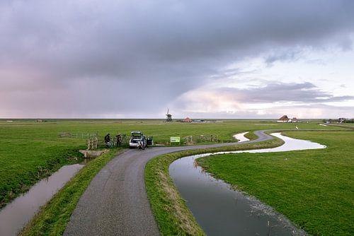 Vogelspotters in de polder
