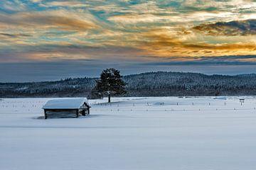 Lapland sky van Michel Kant