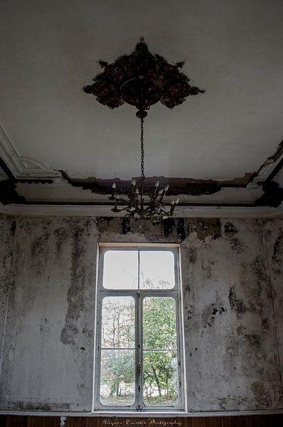 Dreams of Decay van Thijmco Rienstra - van den Berg
