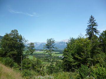 De alpen in Oostenrijk van Wilbert Van Veldhuizen