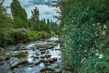 De rivier de Emscher herbrondt in Dortmund Huckarde van Johnny Flash