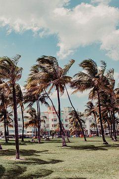 Miami Florida van Amber den Oudsten