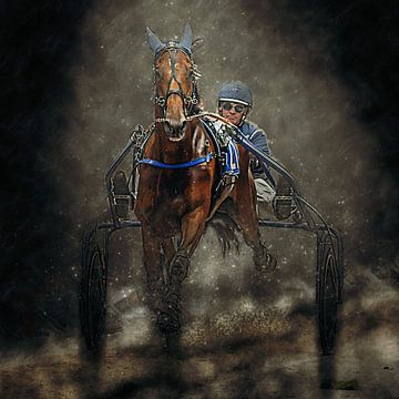 Kortebaandraverij paard en ruiter van Frank van der Leer
