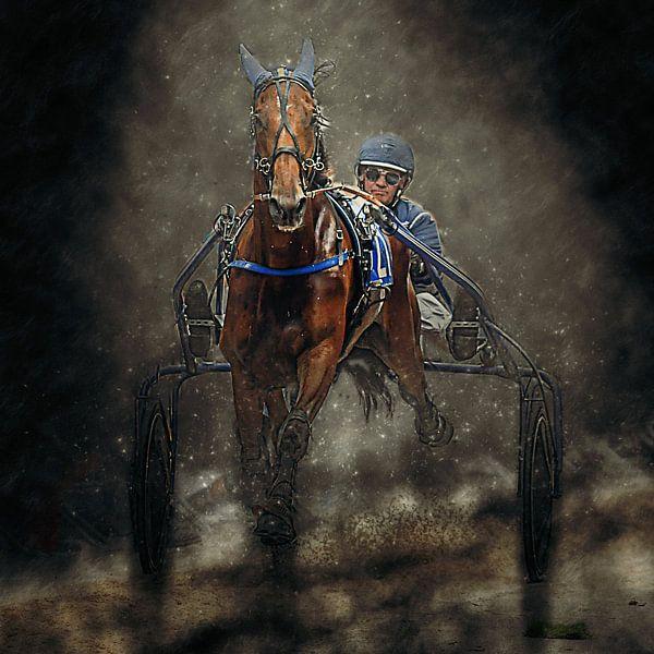 Kurzplatz Pferderennen Pferd und Reiter von Frank van der Leer