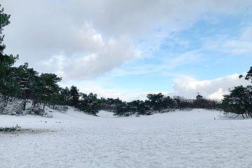 Bos en duinen in de winter met sneeuw van Edith Wijte