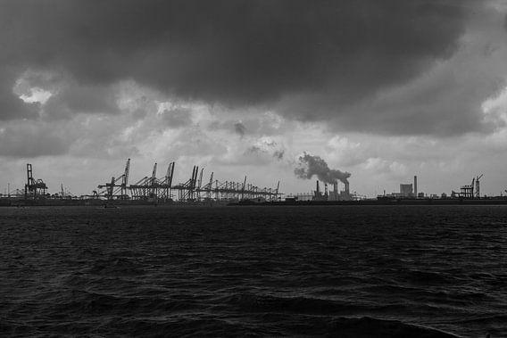Zicht op Maasvlakte europort
