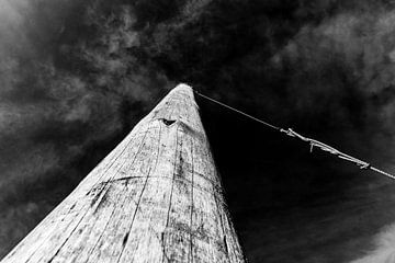 Holzmast mit Seil von Wim Stolwerk