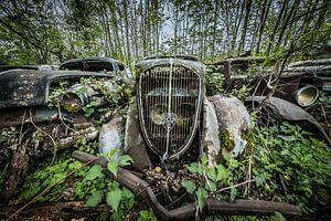 Oude auto tussen de bomen
