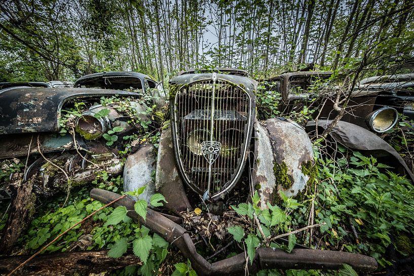 Oude auto tussen de bomen van Inge van den Brande