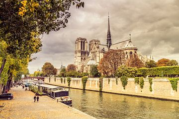 Paris Notre Dame sur davis davis
