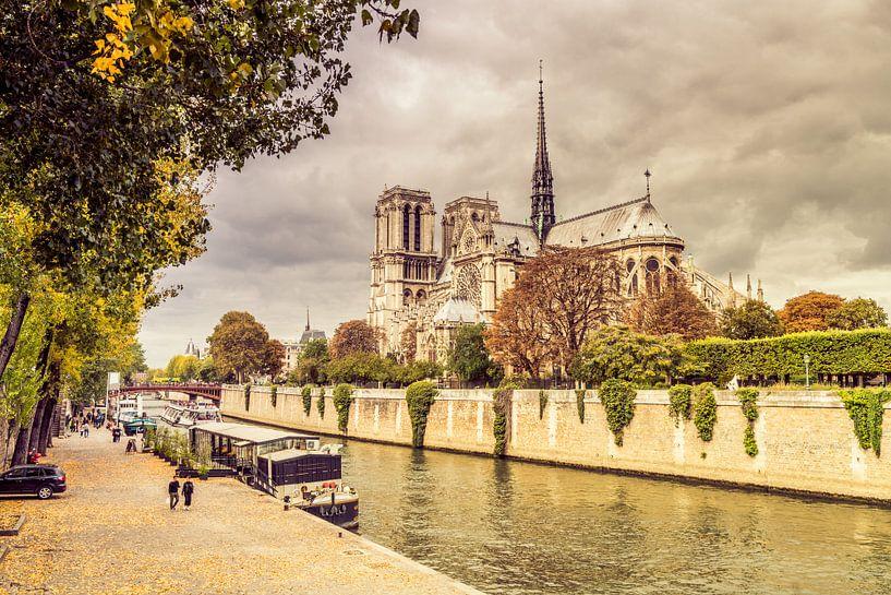 Paris Notre Dame van davis davis